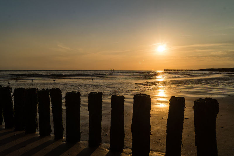 Westkapelle -Netherlands Beach Beauty In Nature Golden Hour Horizon Over Water Nature No People Outdoors Scenics Sea Silhouette Sky Sun Sunlight Sunset Tranquility Water Wooden Post