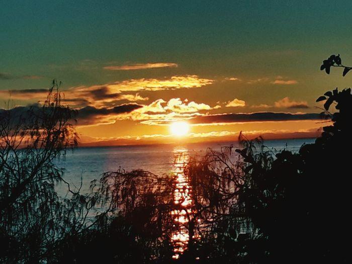 sunrise Hervey