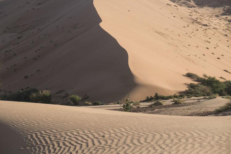 Scenic View Of Sand Dunes In Desert