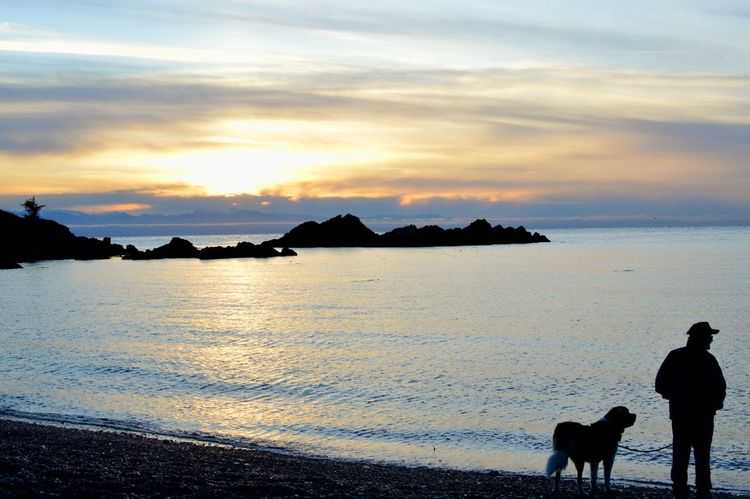 A man and his dog. Beauty In Nature Rosario Beach Anacortes PNW PNWonderland Sunsetlover Dog Silhouette Pets Sunset Beach Outdoors Water Tranquility Domestic Animals Landscape Sky People Animal Themes Nature