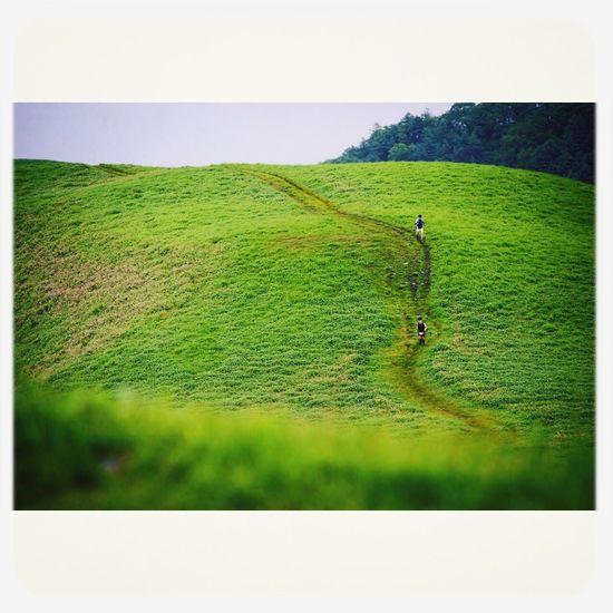 美ヶ原高原 Trailrunning Landscape Fromthetrails 50mile