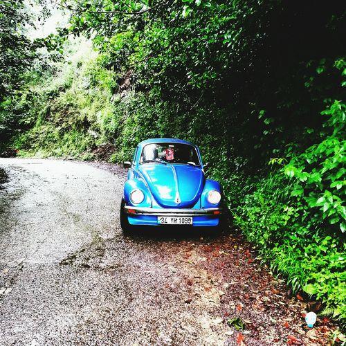 Rize/Turkey Vosvos Green Blue Rainy Days VW Beetle Rizevos Hello World Love Teagarden
