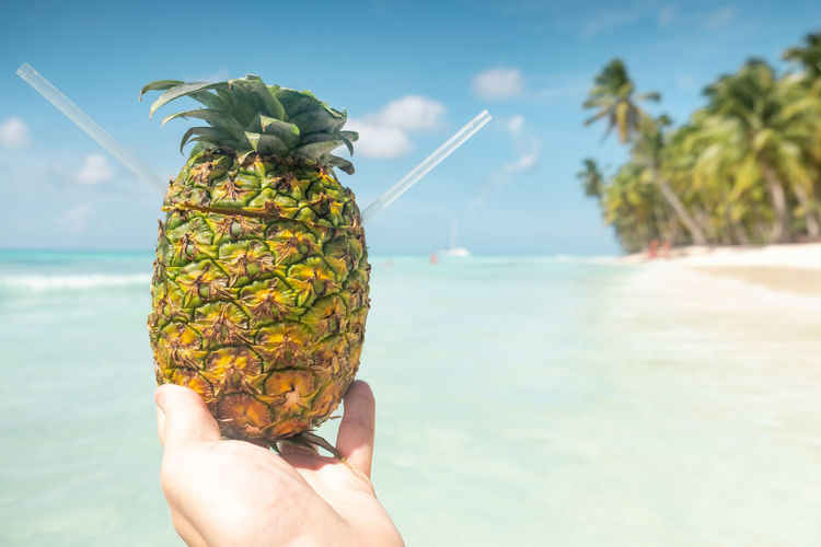 Human Hand Hand Sea Water Holding Real People Beach Human Body Part One Person Unrecognizable Person Sky Nature Leisure Activity Food And Drink Day Food Personal Perspective Healthy Eating Horizon Over Water Outdoors Body Part Finger Copy Space Pineapple Tropical Fruit