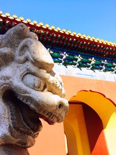 stone lion Photography Stone Lion Park