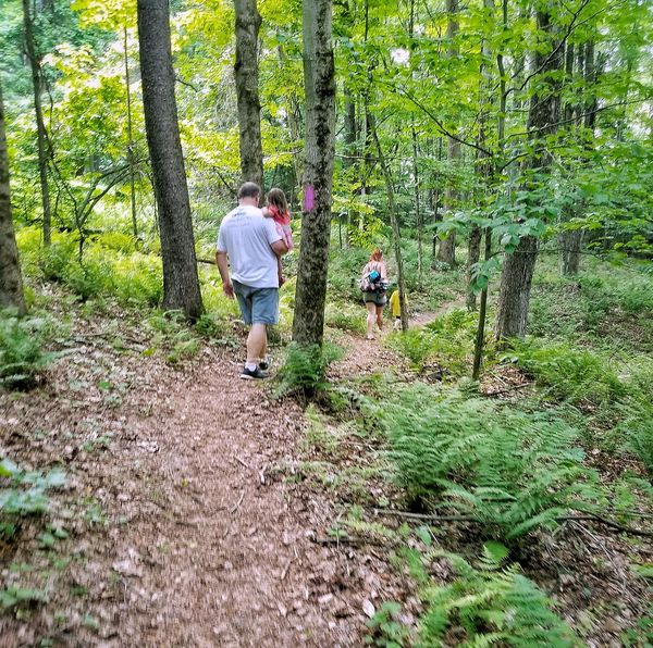 My family on a nature walk Real People Walking Growth Outdoors Togetherness Tree People Adult Children Hiking Hiking Trail Nature Walk ♥ Family❤ Leaves🌿 Pennsylvania Prince Gallitzin EyeEmNewHere Glendale,pa