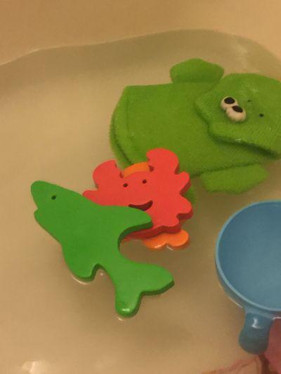 Green Color Indoors  No People Close-up Day Bath Bathtime Bath Time Toys Childhood Bathtoys