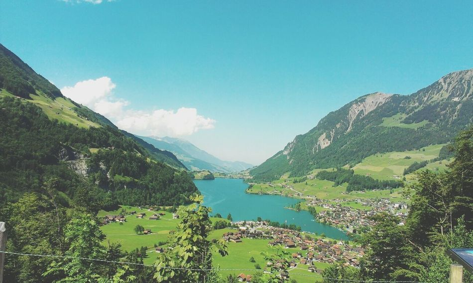 Things That Are Green Taking Photos Bern Meiringen