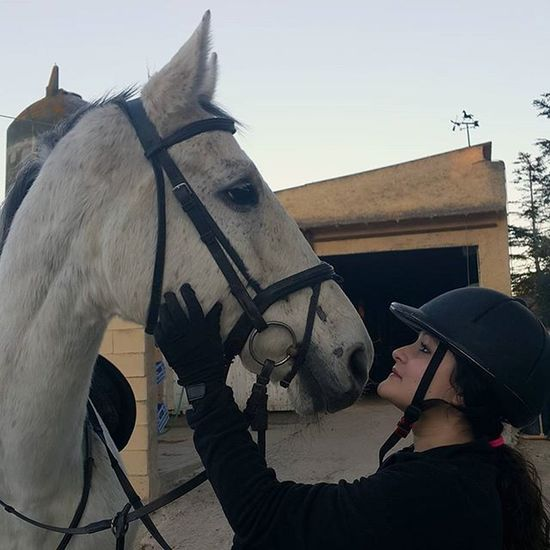 Horse Love Perfect Tarantino BIGLOVE Verybig Beautiful
