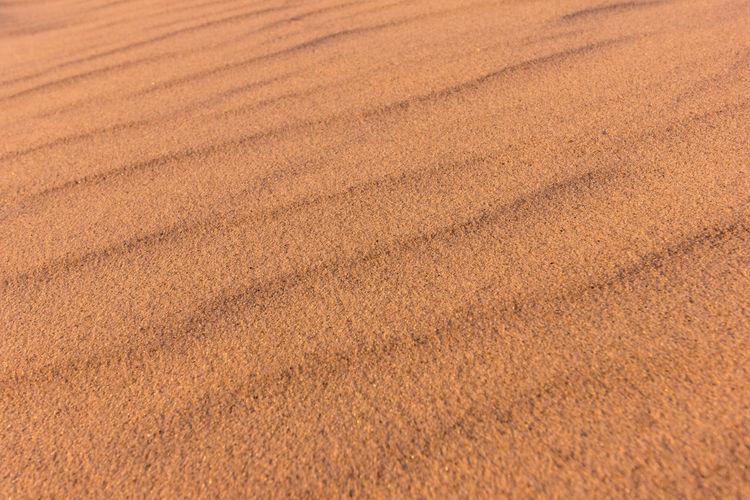 Sand Beach Beachphotography Sand Dune Sandy Beach Pattern Pattern, Texture, Shape And Form Patterns In Nature Sand Patterns Sand Dune Backgrounds Sand Beach Full Frame Brown Textured  Close-up