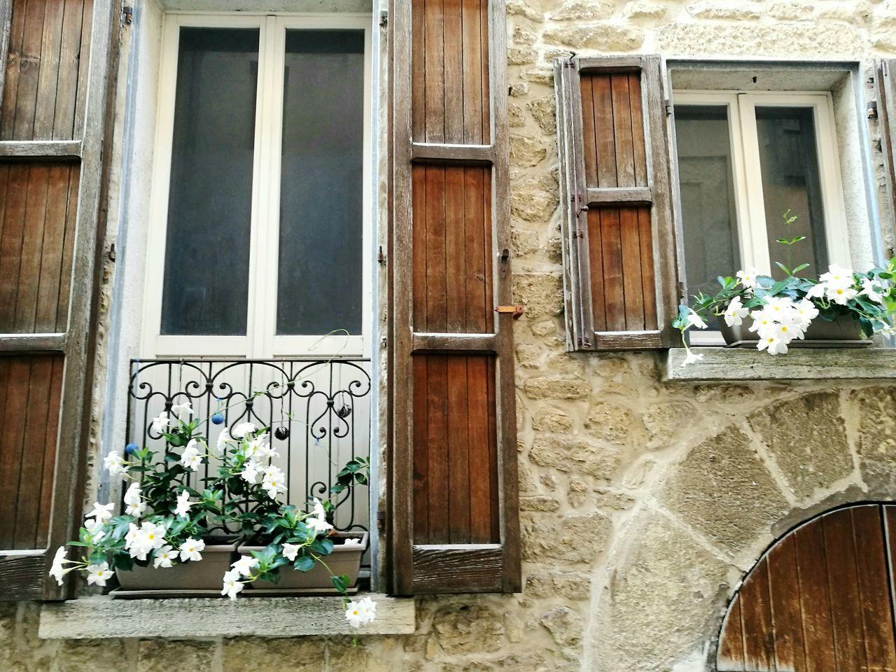 FLOWER POTS ON BUILDING WINDOW