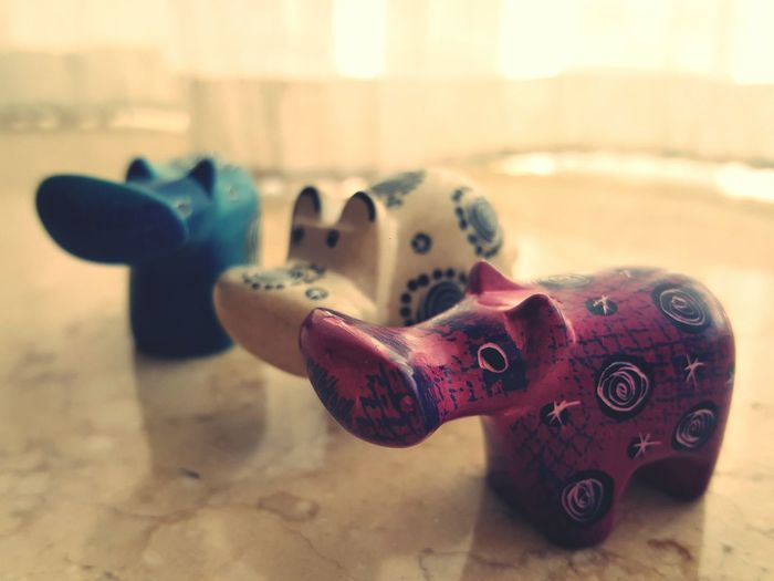 Hipo Cute♡ Cute Cuteeee♥♡♥ Small Things Small Animals Littlethings Little Creatures