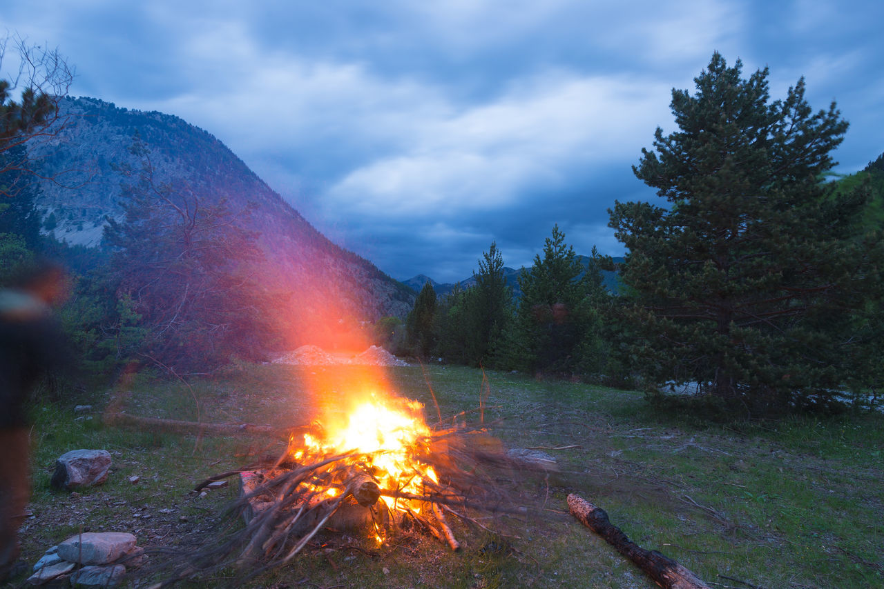 burning, smoke - physical structure, sky, flame, cloud - sky, outdoors, no people, nature, heat - temperature, bonfire, tree, day, beauty in nature