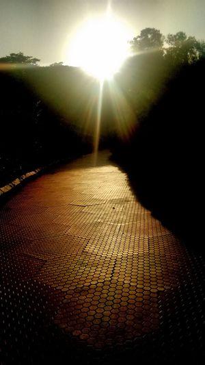 Sun set rays sweeping evening garden path Sun Set Evening Garden Noedit Nofilter First Eyeem Photo Pastel Power