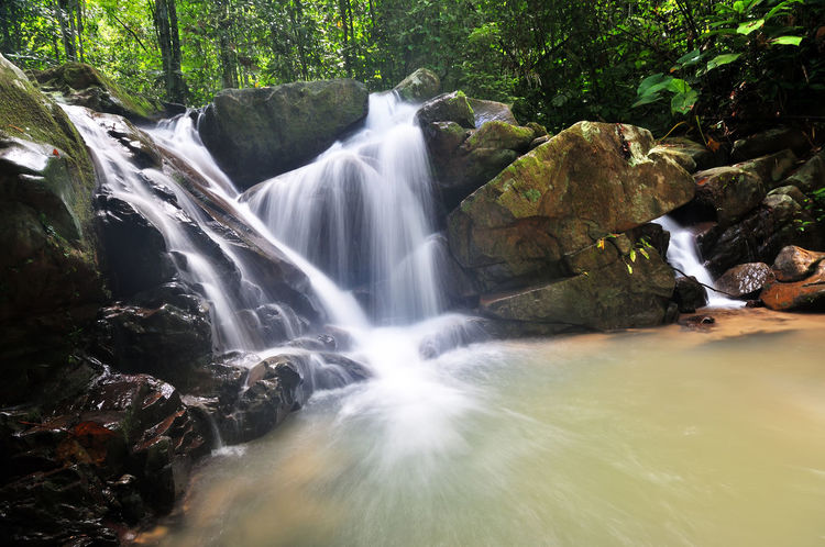 Kionsom Waterfall in Sabah Borneo Kota Kinabalu Beauty In Nature Borneo Island Day Growth Jungle Long Exposure Malaysia Motion Nature No People Outdoors Rain Forest Sabah Scenics Tree Water Waterfall