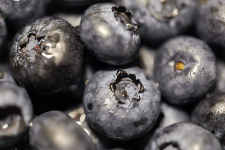 Blueberries Selective Focus Premium Premium Collection Still Life Best EyeEm Shot Macro Macro_collection Market Eyeemmarket EyeEm Best Shots EyeEm Gallery Foodphotography Photooftheday Photo Full Frame Close-up Selective Focus Backgrounds No People Indoors  Still Life Large Group Of Objects Food Food And Drink Focus On Foreground Berry Fruit