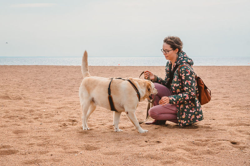A girl and a labrador retriever communicate on a sandy beach in autumn. walking with a dog