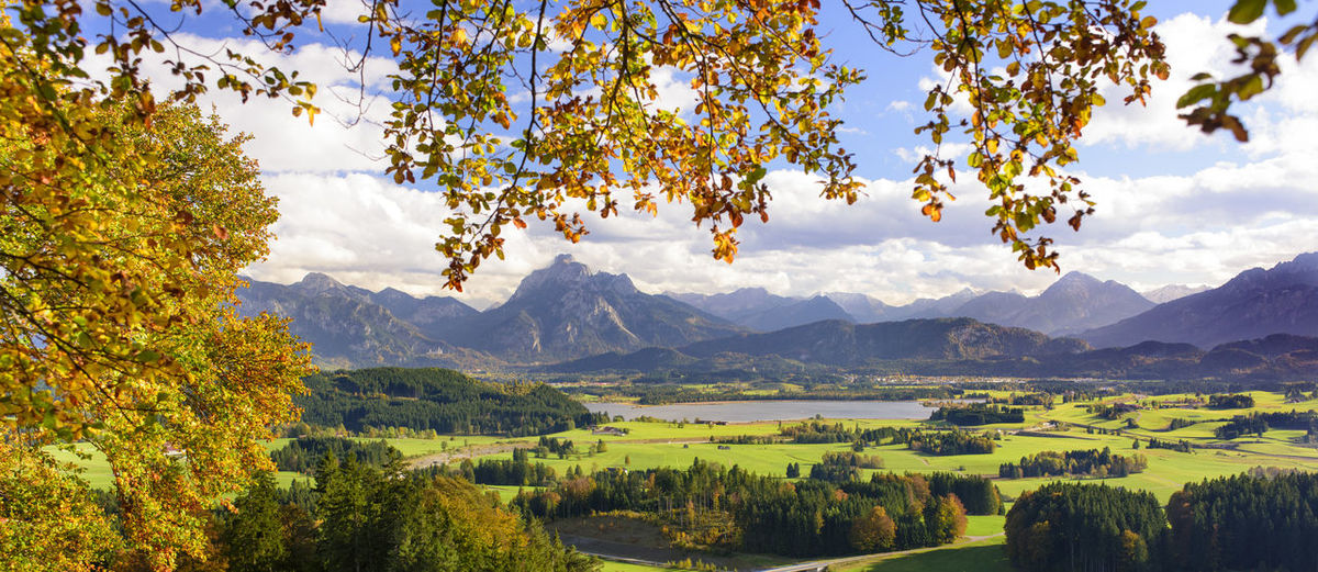 rural landscape in Bavaria at autumn Autumn Autumn colors Autumn Leaves Bavaria Land Panoramic Allgaeu Autumn Beauty In Nature Cloud - Sky Environment Land Landscape Mountain Nature No People Outdoors Range Scenics Scenics - Nature Sky Tranquil Scene Tranquility Tree Wide Angle