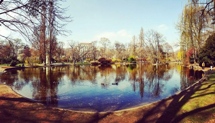 Stadtpark Early