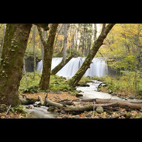 風景 銚子大滝 滝 奥入瀬渓流