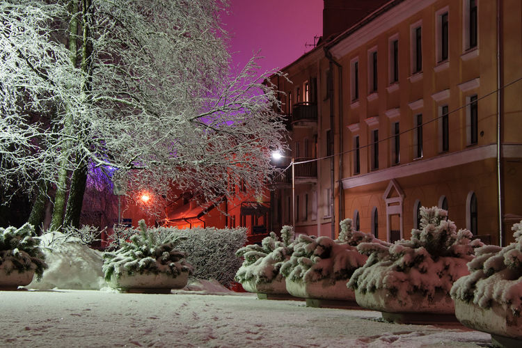 Color of Night Night City Light Evening Winter Snow Color Outdoors Illuminated Europe Minsk Eastern Europe Belarus No People BY112_MINSK_AK BY112_BELARUS_AK