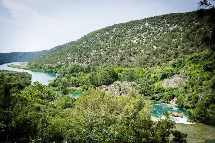Krka Krka National Park Plant Growth Water Beauty In Nature Tree Green Color Nature Scenics - Nature Sky Outdoors