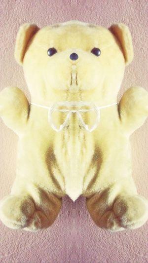 Symmetrical Teddybear Yellow