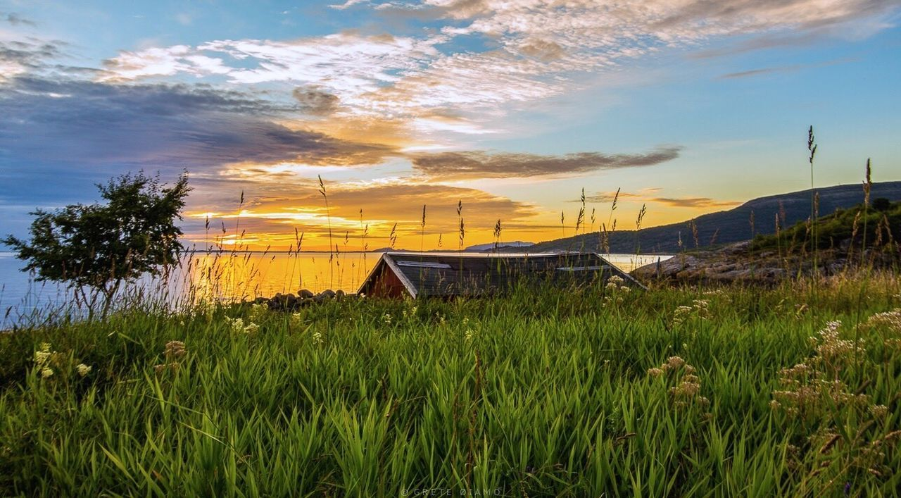 sky, grass, field, cloud - sky, nature, outdoors, growth, no people, landscape, sunset, tranquil scene, tranquility, scenics, beauty in nature, architecture, built structure, plant, rural scene, mountain, day, building exterior, tree