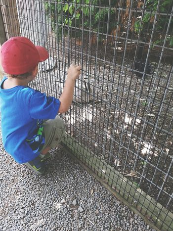 My 5yr old autistic son loves animals! But anytime he would see an animal in a cage he'd always get upset about it. Telling Stories Differently EyeEm Gallery Childhood EyeEm Animal Lover Love For Animals Emotional Photography Loves Animals Proud Mommy