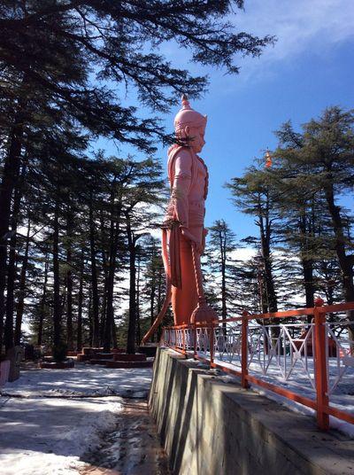 Hanuman the monkey god Statue Tree Plant Nature Sky Day Sunlight Full Length
