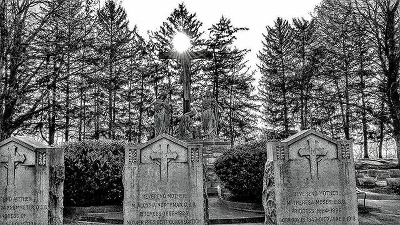 tree, tombstone, architecture, built structure, cemetery, outdoors, no people, building exterior, day, memorial, low angle view, nature, sky, gravestone, branch
