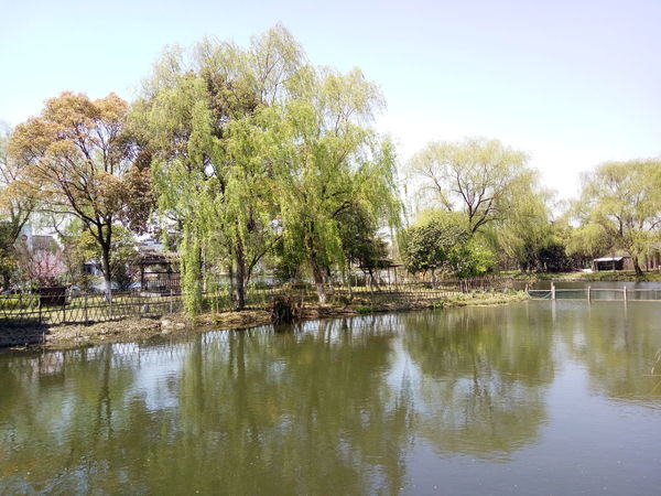 China Photos Jiangsu Zhouzhuang