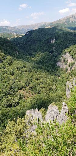 foresta di Addolí Sky Landscape