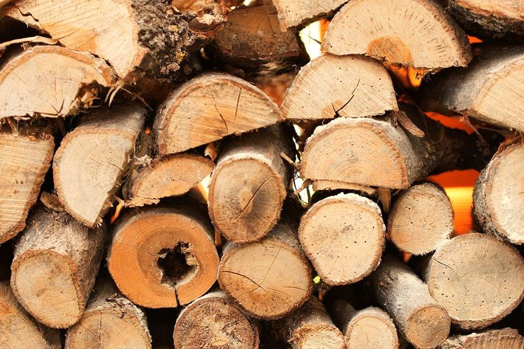 Timber Log Stack Firewood Woodpile Heap Lumber Industry Forestry Industry Full Frame Backgrounds Deforestation Wood - Material Close-up Fuel And Power Generation Textured  No People Day Tree Outdoors