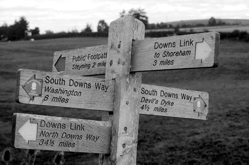 Choices Text Communication Sign Western Script Focus On Foreground Guidance Information Wood - Material Information Sign Directional Sign Day Close-up Direction Outdoors Message Footpaths Blackandwhite Black And White