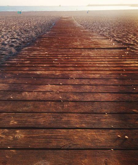 Close-up of wood on beach