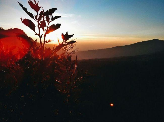 Good morning from heaven Sunrise Populer Photos EyeEm Best Shots Enjoying Life