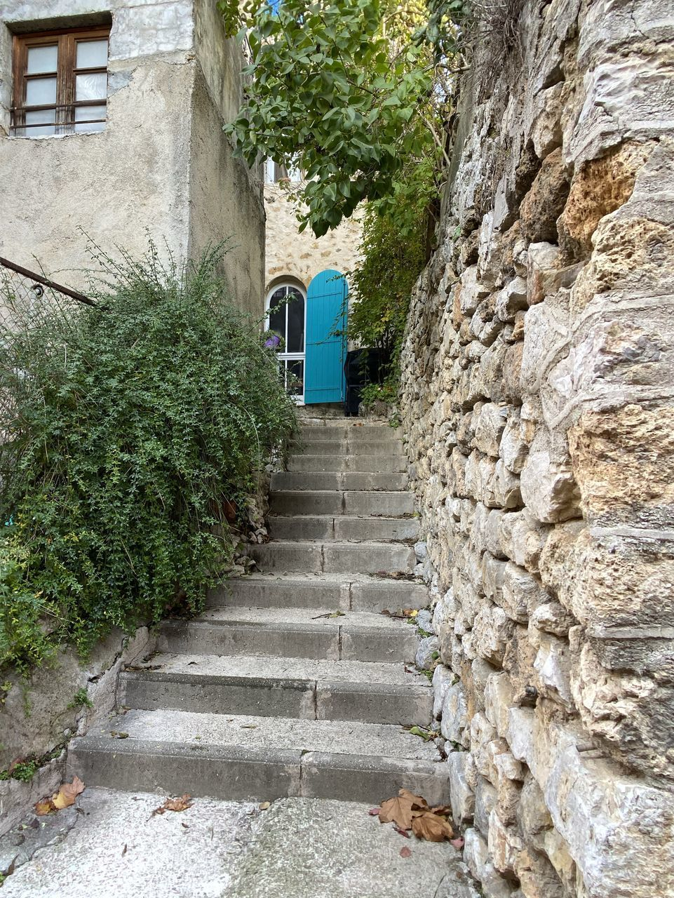 architecture, staircase, built structure, direction, steps and staircases, the way forward, plant, building, building exterior, no people, solid, day, stone wall, wall - building feature, wall, growth, nature, stone material, entrance, outdoors, alley