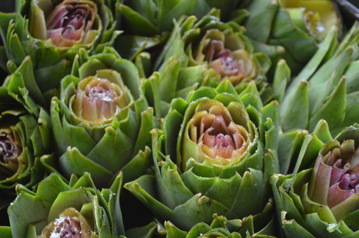 Goodlunch Eating Healthy Carciofi Grilled Artichoke Flower Backgrounds Leaf Vegetable Salad Close-up Succulent Plant