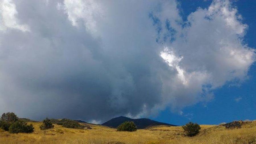 Etna🌋 Sicily Mount Etna Volcano Rifugiocitelli 723 Walk Escurption Landscape Nature Loveit Clouds Wood Trees Black Yellow White Lightblue Colorcomposition Colorful Lightful Wonderful Amazingview Picoftheday Picoftheweek instatripsummer2k15lastholiday