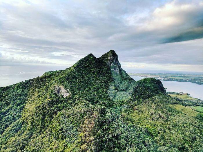 Jungle mountain.
