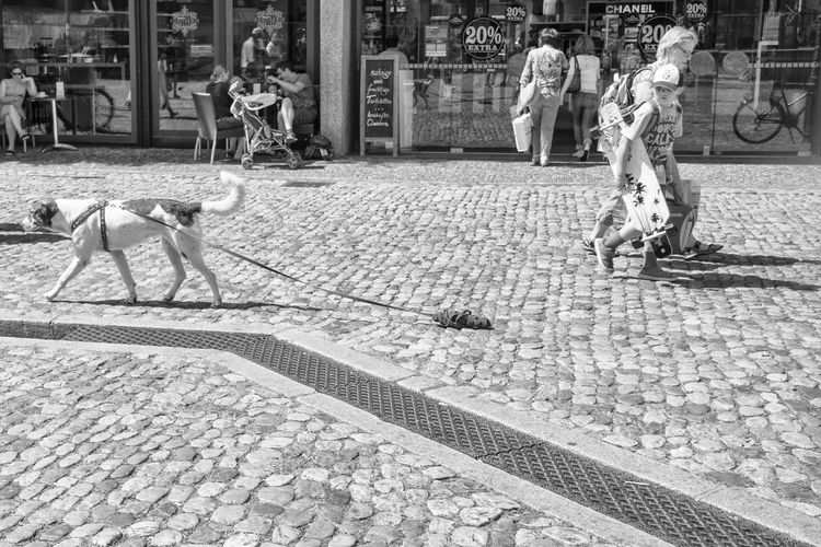 The Street Photographer - 2018 EyeEm Awards Adult Architecture Building Exterior Built Structure City City Life Cobblestone Day Footpath Full Length Group Group Of People Incidental People Lifestyles Men Outdoors People Real People Street Women 17.62°