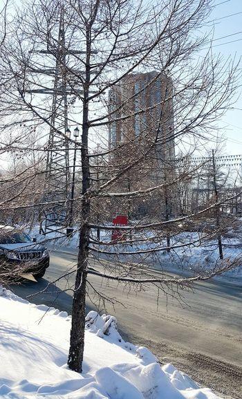 Street Photography Streetphotography Showcase: December EyeEm Gallery Snow ❄ Winter Streetlights Streetphotography Urbanphotography Urban Geometry Urbanphotography Sunshine