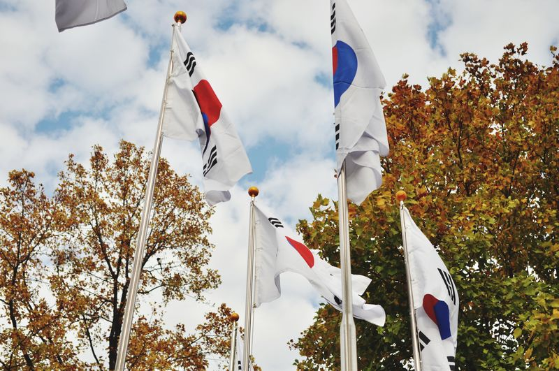 Low angle view of korean flags against trees
