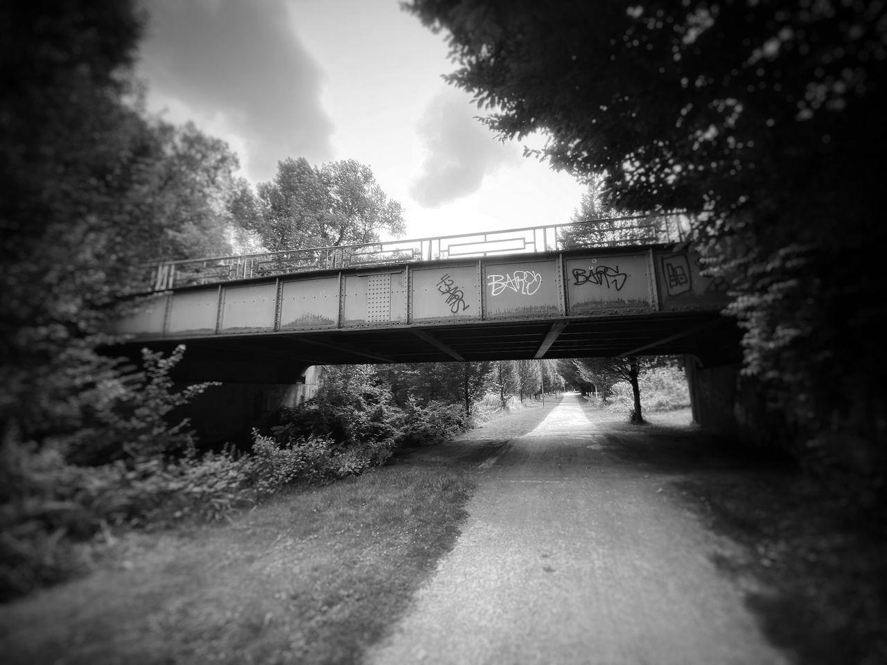 TRAIN PASSING THROUGH BRIDGE