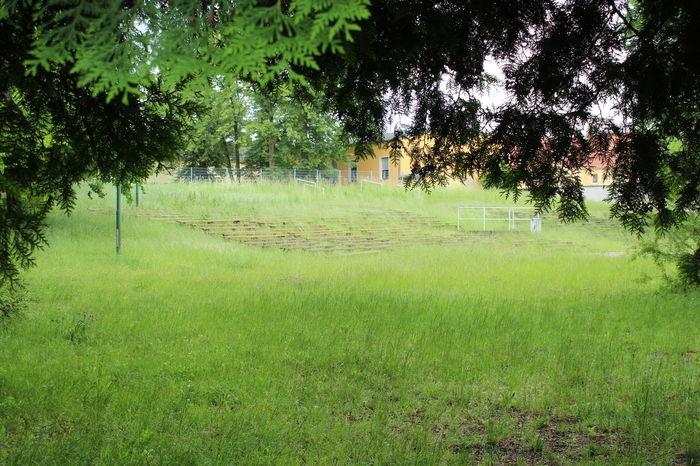 Day Freilichtbühne Grass Landscape Nature No People Outdoors Tree Verwachsen