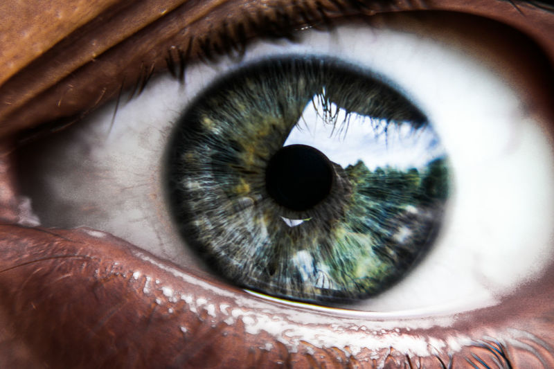 macro Human Eye Real People Close-up Human Body Part Eyesight Eyelash Iris - Eye Eyeball One Person Sensory Perception People Adults Only Only Women Adult Day Outdoors Landscape Nature Mirror Mirror Reflection Eye EyeEm Best Shots First Eyeem Photo Vibrant Color Like
