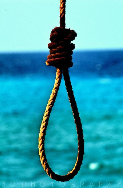 Rope Hanged Seaview