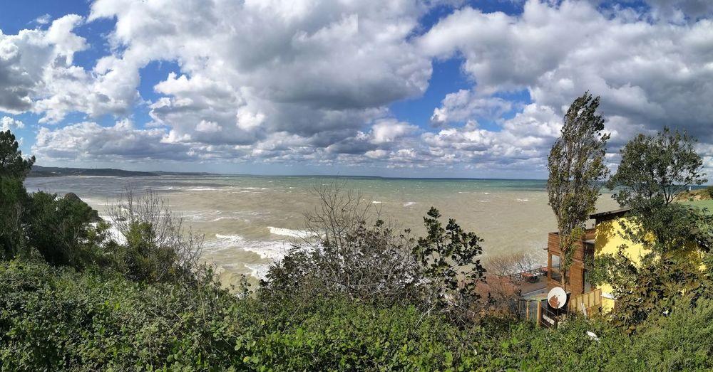 Cloud Cloud - Sky Cloudporn Water Tree Sea Beach Sand Summer Sky Horizon Over Water Grass Cloud - Sky