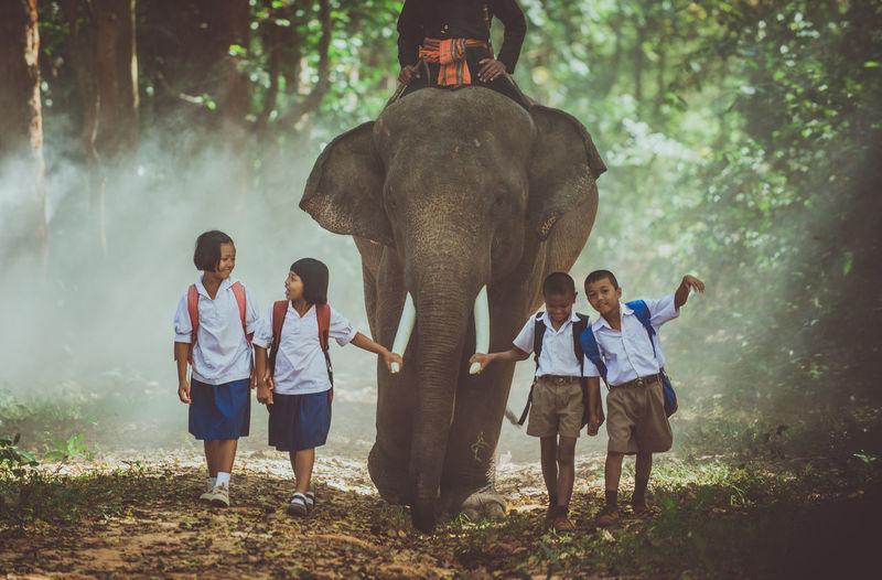 School children walking by elephant in forest