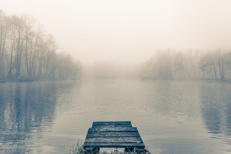 An old wooden pier on a small lake in a foggy autumn morning Autumn Calm Dock Fall Fog Lake Misty Nature Peaceful Tree Water The Great Outdoors - 2017 EyeEm Awards